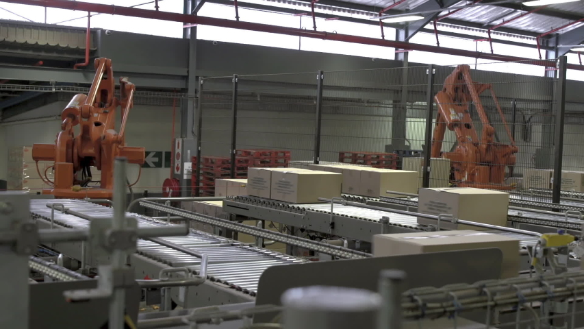 Automated robotic palletizing arms in warehouse stack boxes. Royalty-Free Stock Footage #1057961479