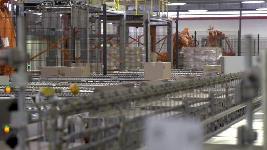 Packed boxes travel on automated rollers as robotic arms palletize them in warehouse. Royalty-Free Stock Footage #1057969633
