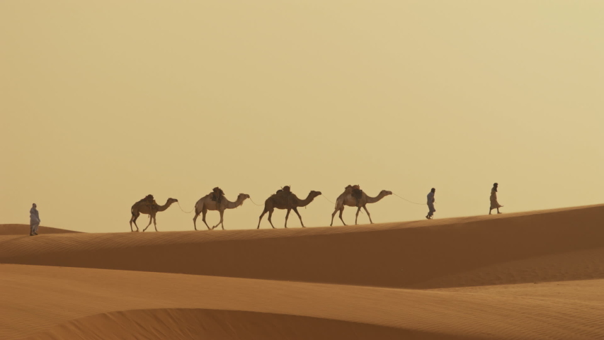 People lead a pack of camels across a desert