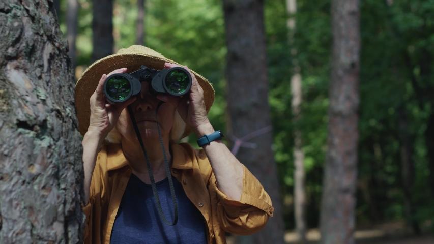 Careful elderly woman traveler tourist exploring the forest nature watching in binoculars noticing wild animal scared hiding behind tree.