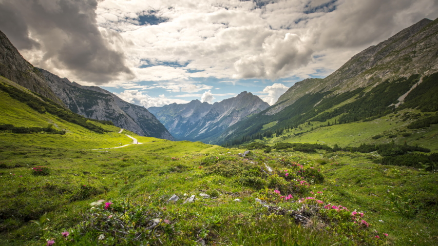 Meadow with flowers in mountains in front alps mountains karwendel austria alps mountains time lapse video.