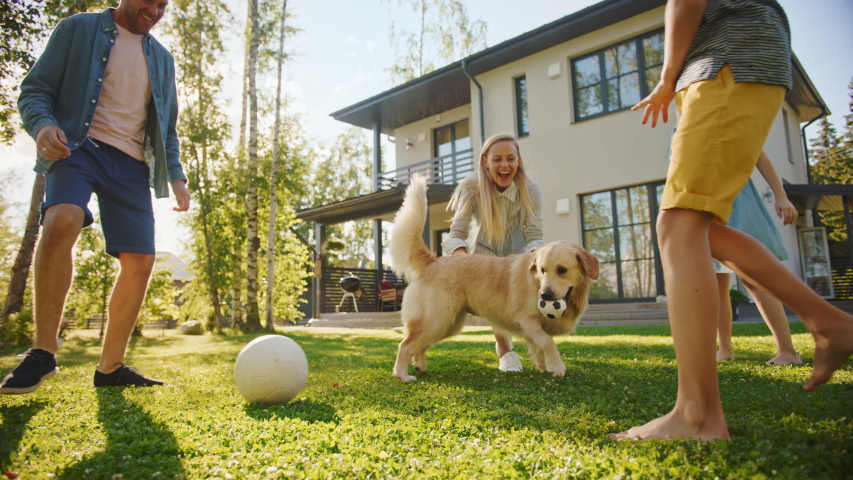 Smiling Beautiful Family of Four Play Soccer with Happy Golden Retriever Dog at the Backyard Lawn. Idyllic Family Having Fun with Loyal Pedigree Puppy Outdoors in Summer House. Handheld Ground Shot | Shutterstock HD Video #1058262043