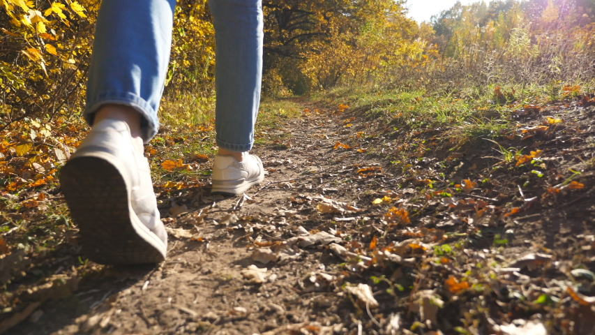 Low view of female feet in sneakers steps along path near forest. Legs of young woman goes among trail at early autumn. Girl walks at wild nature at sunny day. Close up Slow motion | Shutterstock HD Video #1058324218
