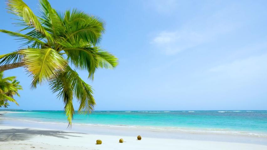 Natural tropical Sea Beach landscape. Crystal clear sea wave and white sand beach. Relax on clean sunny Sea Beach long loop video 4k.