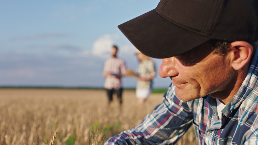 Old man farmer in front of the camera closeup touching some ear of wheat he enjoying the time his big children man and lady walking on the background analyzing the harvest of this year   Shutterstock HD Video #1058435506