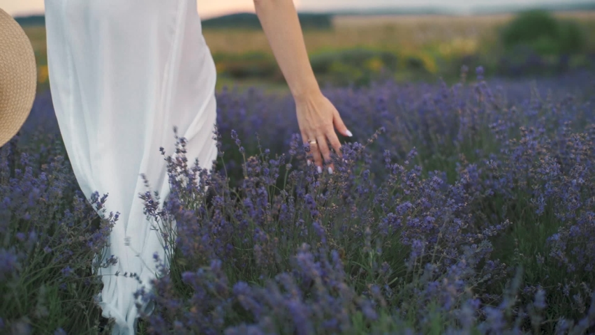 free and happy young woman in flowing dress on lavender fields at sunset Royalty-Free Stock Footage #1058470999