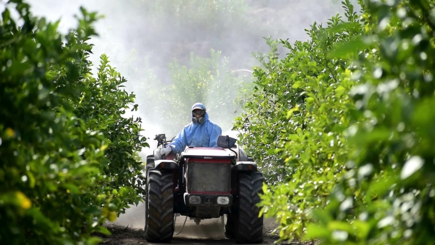 Tractor spray pesticide and insecticide on lemon plantation in Spain. Weed insecticide fumigation. A sprayer machine, trailed by tractor spray herbicide. Royalty-Free Stock Footage #1058486215