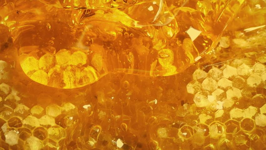 Golden Honey Drips Down Honeycomb | Shutterstock HD Video #1058497048