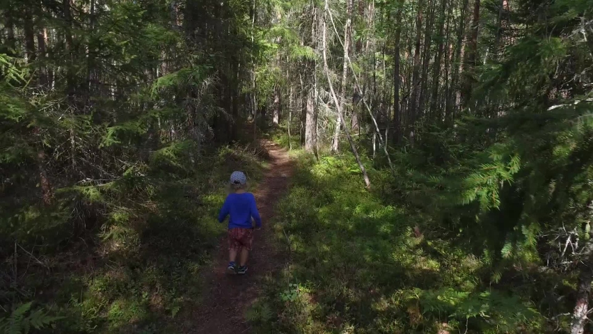 A small child with a curly white hair walking on a footpath in a forest with lots of pines and spruces, in the Southern Finland in the summer, on the end of August. | Shutterstock HD Video #1058574754