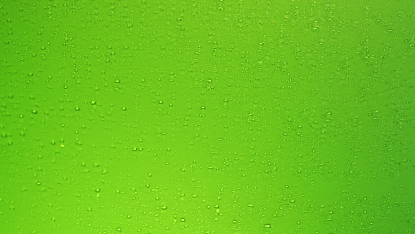 4K High quality footage of Water Drops, Drops of Rain trickling down on green background. Rain Drops Falling down on green glass .  Close up Slow Rain in slow motion.  Droplets on glass or bottle.