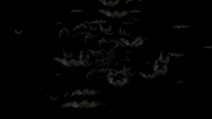 Flying Bats Animation with Black Alpha Channel. Halloween Bats Background. Fly Silhouette Bat. Many Flittermouse. Halloween Bat Party Transition Template. 3d Motion Design Elements for Decoration 4k   Shutterstock HD Video #1058691325