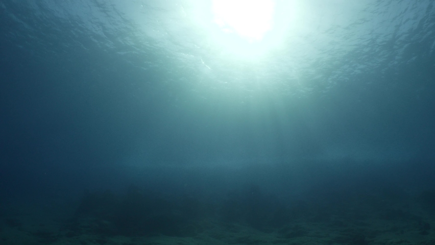 Sun beams sun rays sun shine underwater nice light slow moving at the  bottom reflections relaxing ocean scenery | Shutterstock HD Video #1058793646