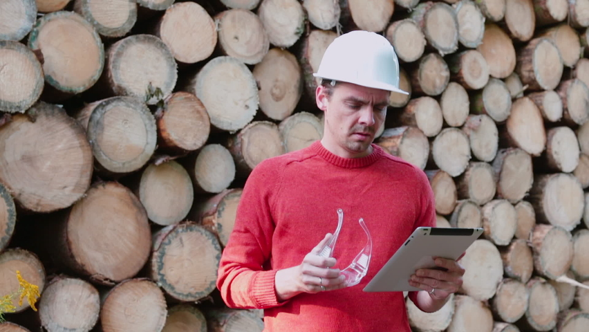 Accounting report of timber sales. Worker enters data into tablet while loading timber in factory. Using an electronic gadget in statistical work an enterprise. Trade in timber for building houses. | Shutterstock HD Video #1058852761