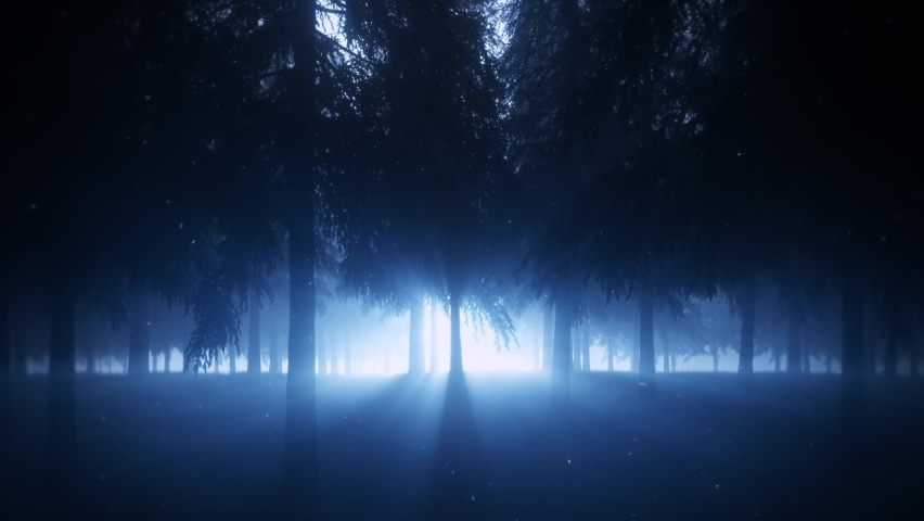 Mystical Forest by Night with Light Rays - Loop Landscape Background Royalty-Free Stock Footage #1058894122