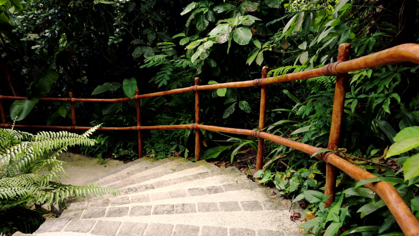 Dense tropical rain forest walkway with concrete stairs and wooden bamboo handrails under green leaves. Walking path and go down in the jungle. First person view. Tropical park. | Shutterstock HD Video #1059085706
