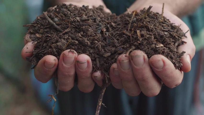 Humus, fertilized soil, compost soil. Man hands holding compost, organic soil, natural fertilizer. Agriculture and fertility concept