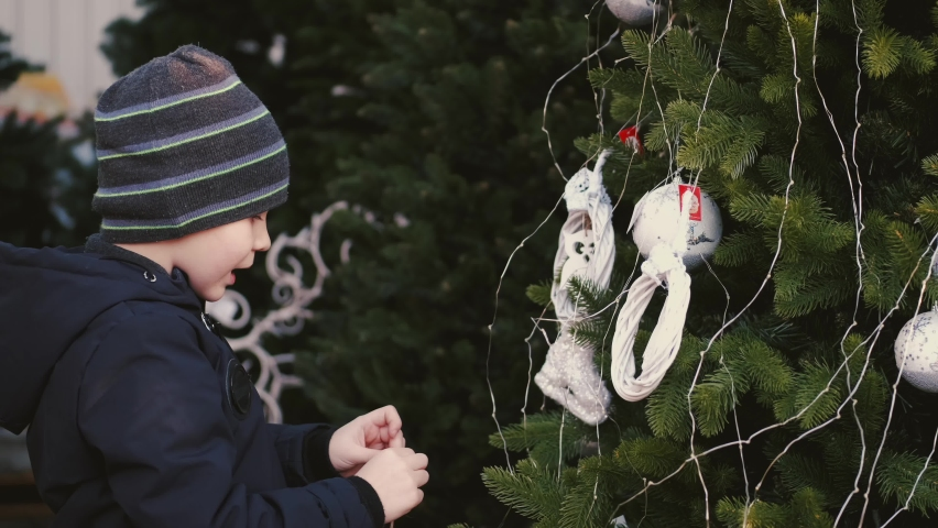 Little boy wears hat. Kid chooses cristmas tree. Child is on cristmas market.