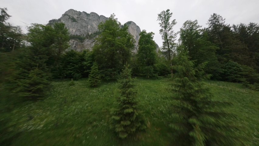 First person view of flying through high trees revealing a big mountain | Shutterstock HD Video #1059130097