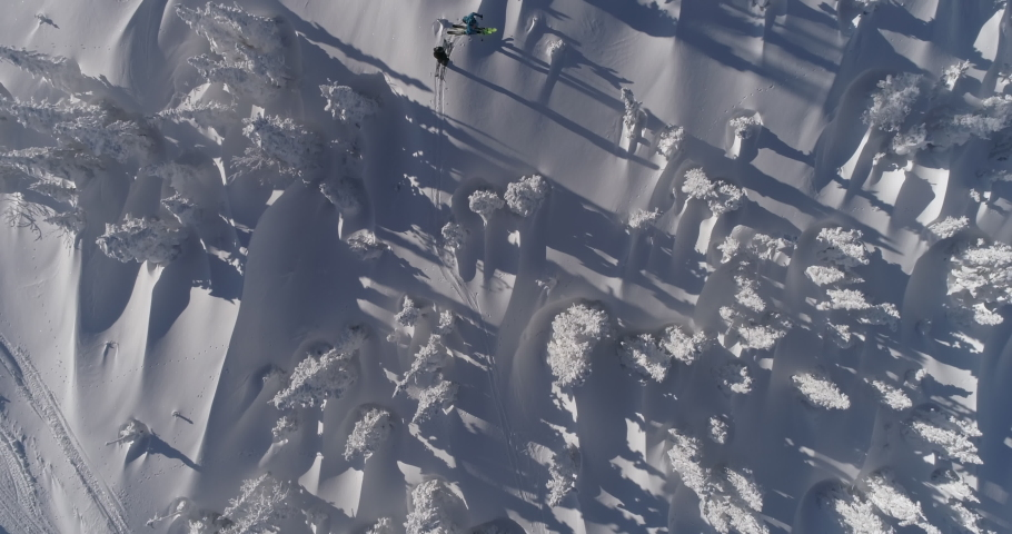 Aerial Top view of Skiers. Ski touring and splitboarding concept. Winter Day. Epic shot of ski man crossing the frame in frozen forest. 4k RAW footage
