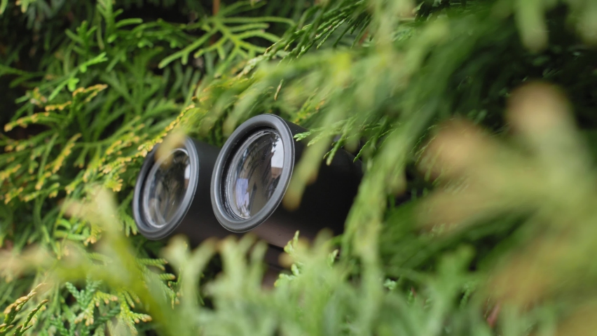 Person Hidden in Bush Peeping with Binoculars and Spying Others Royalty-Free Stock Footage #1059138263