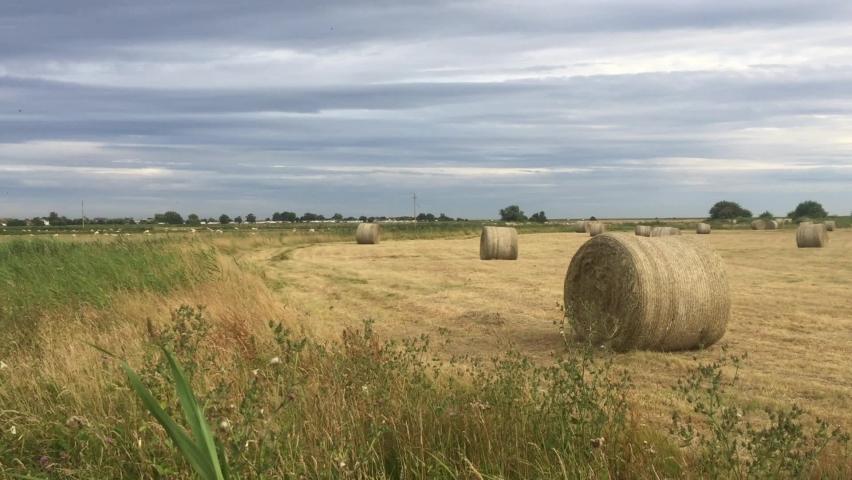 Hay bales round in field farm panning shot  | Shutterstock HD Video #1059199967