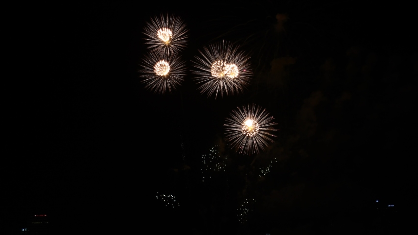Celebration greeting Beautiful fireworks colorful fireworks on the beach for abstract background , anniversary, celebration , 4th independence day and new year background or wallpaper.    Shutterstock HD Video #1059220301
