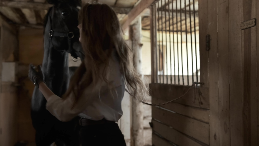 A girl in a white shirt and gloves takes a beautiful horse out of the stall | Shutterstock HD Video #1059246149