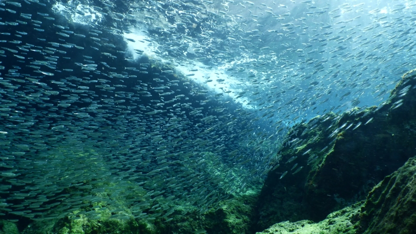 Sun ray and sun beam scenery underwater waves on surface of water slow ocean scenery | Shutterstock HD Video #1059246893