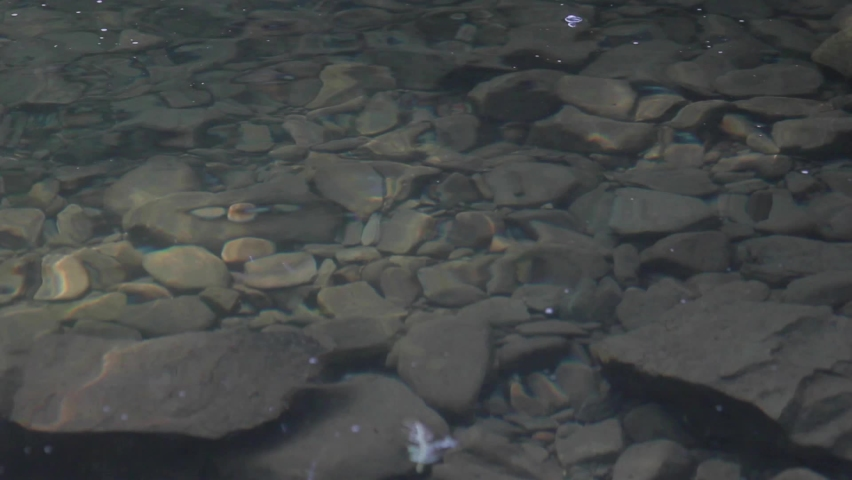 Clean and clear water in mountains waterfall. Rocks under the water | Shutterstock HD Video #1059256547