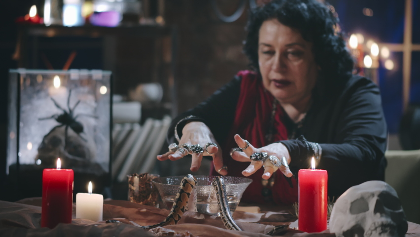 Portrait of old gypsy witch casting spell using two serpents, burning candles and bowl of water. Fortune teller performing ritual to foresee future | Shutterstock HD Video #1059276596