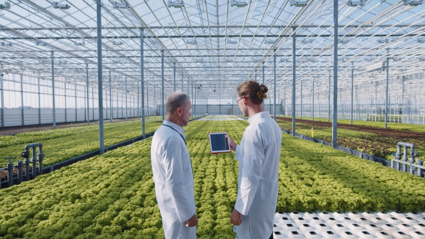 Future greenhouse. Two scientists activate tablet computer technologies for futuristic inspection of greenhouse plantations. Organic cultivation. Bio farming. Artificial intelligence. | Shutterstock HD Video #1059357314