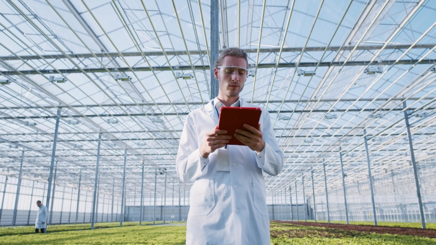Smart agriculture. Artificial intelligence in greenhouse business. Caucasian technology engineer using tablet computer holographic apps inspecting plantations. Greenery. | Shutterstock HD Video #1059357398