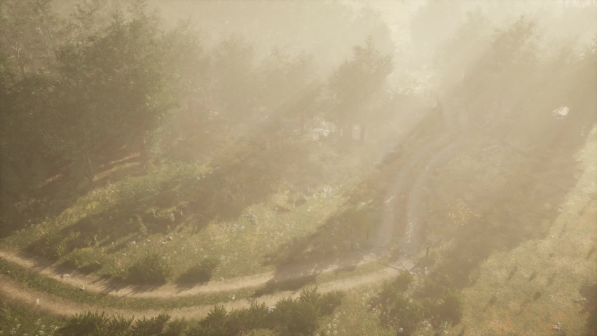 Dirt road through deciduous forest in fog | Shutterstock HD Video #1059367610