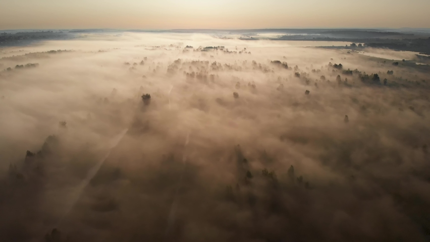 Epic aerial view of sunrise fog covering field with trees. Autumn sunny cold morning. 4K   Shutterstock HD Video #1059491186