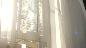 transparent curtain on the window, gently moved by the wind. sunlight. sun's rays shine through the transparent tulle