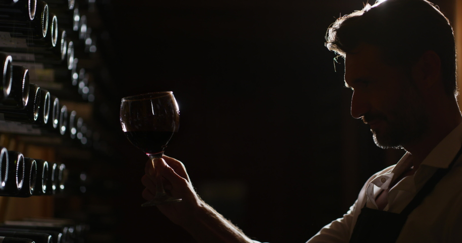 Silhouette of successful male winemaker or sommelier is tasting a flavor and checking quality of a red wine poured in transparent glass  in a wine cellar.