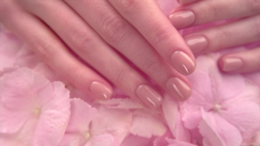 Manicure, Beautiful Woman's hands, Spa and Manicure concept. Female hands with beautiful natural pink french elegant manicure. Soft skin, skincare concept. Beauty nails. Salon. Slow motion 4K UHD Royalty-Free Stock Footage #1059538661
