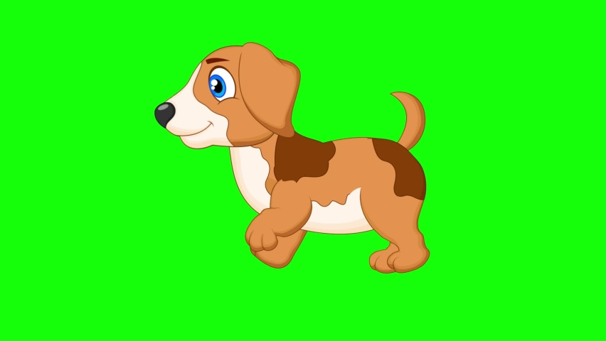 the dog runs and walks happily 2d animation screen green