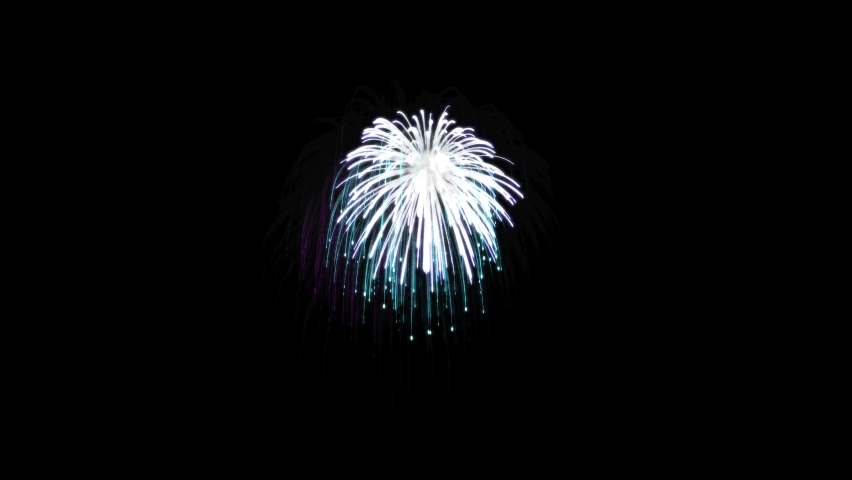 Fireworks colorful on the dark sky it is on a black background. Celebrate on New Year's Day | Shutterstock HD Video #1059621659