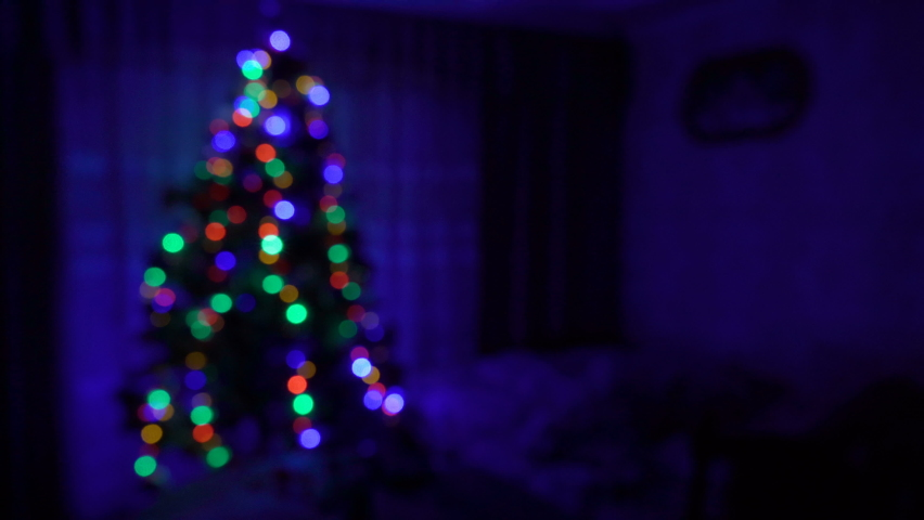 Christmas tree in the room blurred background,on Christmas night a Christmas tree shines in the room | Shutterstock HD Video #1059629594