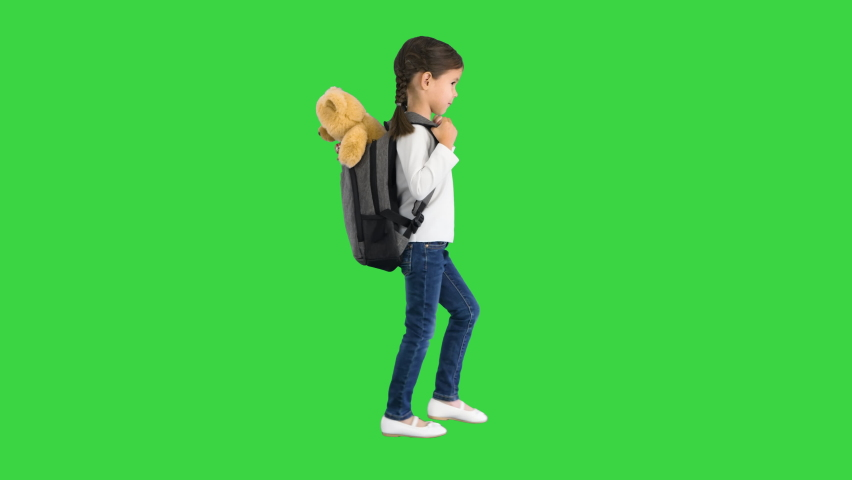 Cute little girl walking to school with a teddy bear sticking out of her backpack on a Green Screen, Chroma Key.