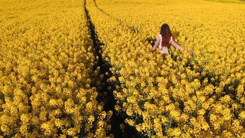Aerial orbit shot: Woman in white dress walks and enjoys rapeseed field