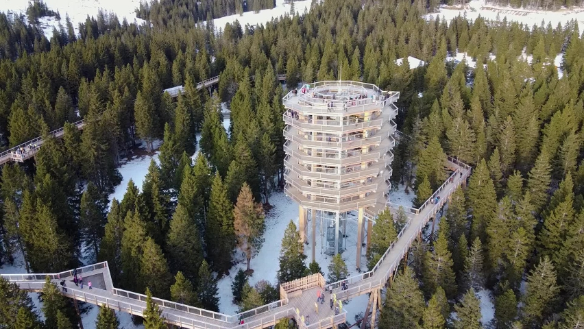 Static aerial shot of Treetop Walk, a viewing tower on a snowy forest in Rogla, Slovenia Royalty-Free Stock Footage #1059784892