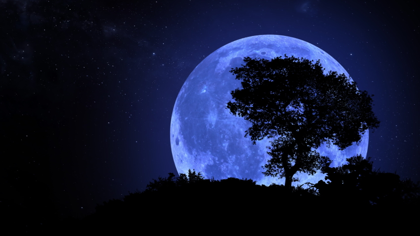 Blue Moon rising over a lonely tree in Southern hemisphere. Blue moon and stars. Photo realistic 3D render. [ProRes - UHD 4K] | Shutterstock HD Video #1059821621