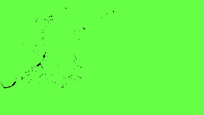 Chroma keying effect of a pool of blood splashing on the screen in slow motion shot at 120 fps from the Carnage collection - Blood VFX Video Element.   Shutterstock HD Video #1059824984