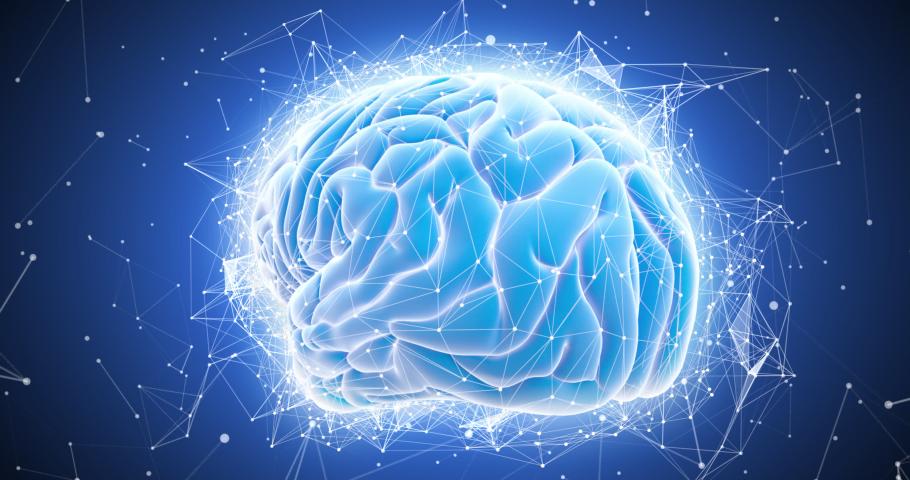 Human brain, thought process and creativity, plexus style 3D render   Shutterstock HD Video #1059916724