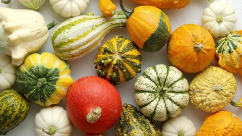 21 Fall Vegetables Table Topper for Fall Halloween and Thanksgiving Reverses to US Flags