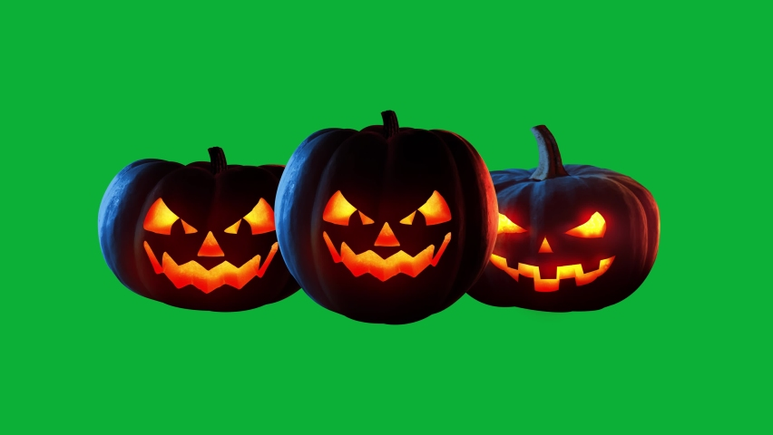 Halloween Transitions on Green screen background - Realistic Jack-o'-lantern Halloween Pumpkin Transition on Chroma key background | Shutterstock HD Video #1059991490