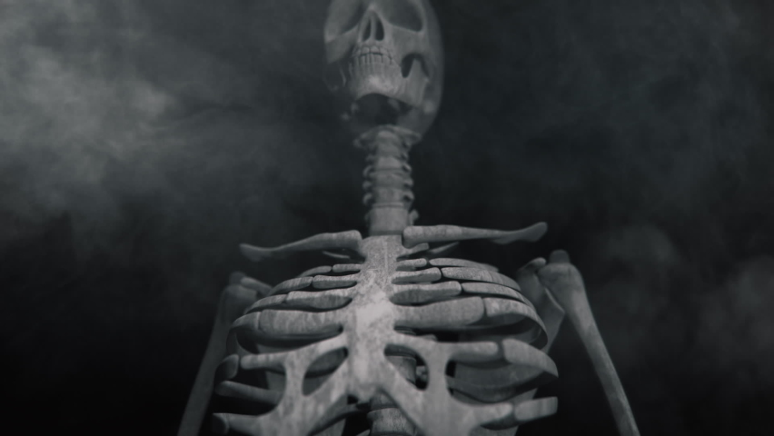 Animation of the appearance of a skull or skeleton from the darkness. Horror scene or Halloween decoration. | Shutterstock HD Video #1060018703