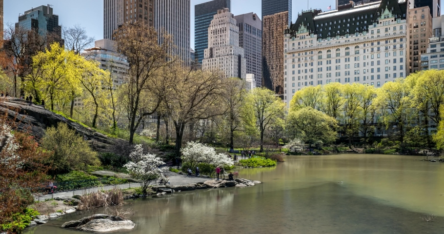Daylight Timelapse Spring Color Over The Pond of Central Park South in New York City | Shutterstock HD Video #1060058141